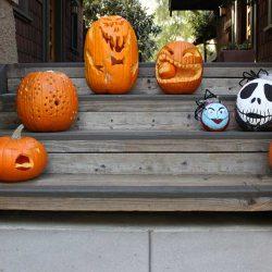 Pumpkins, Pumpkins & more!