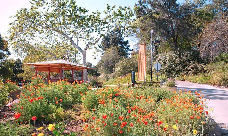 Home in Claremont, CA home rebuild by HartmanBaldwin